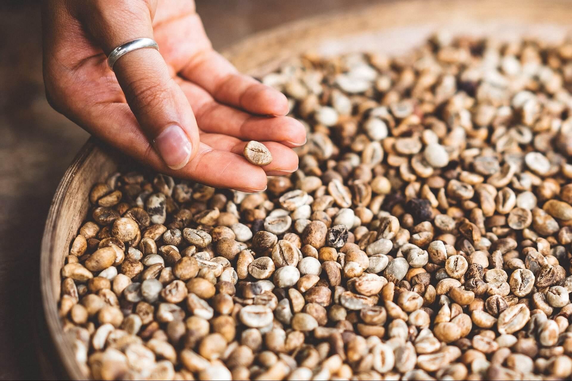 咖啡科普|什麼是單品咖啡?什麼是配方咖啡?