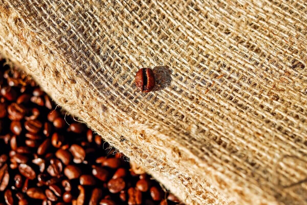咖啡科普|精品咖啡的定義?什麼是精品咖啡?